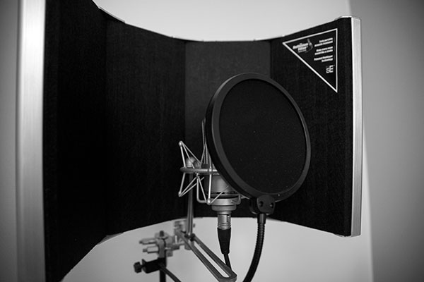 The Best Pop Filter To Record Vocals